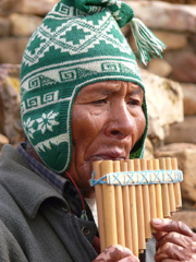 pan-pipe-player